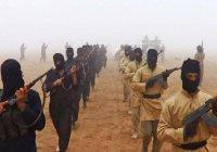 Боевики массово сбегают из Сирии в Иорданию