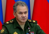 Шойгу: Россия будет координировать с США борьбу с ИГ