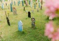 Знают ли покойные о том, что родственники посещают их могилы?