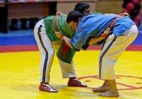 В Казани пройдет Чемпионат мира по борьбе на поясах
