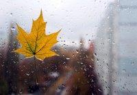 Завтра в Казани ожидаются дожди