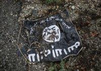 40 террористов ИГ ликвидированы авиаударом в Сирии