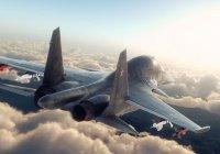 Российская авиация уничтожила 49 объектов ИГ в 5 провинциях Сирии