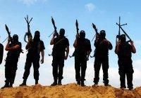 Список террористов из СНГ, воюющих за ИГ, хотят создать в России