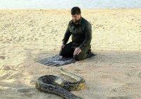 """Кадыров опубликовал """"философское"""" фото со змеей"""
