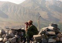 Москву беспокоит рост влияния ИГ в Афганистане