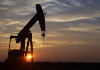 ИГ зарабатывает на нефти $50 млн в месяц