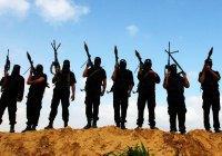 """Израиль включил """"Исламское государство"""" в список террористов"""