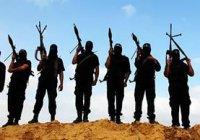 Список нежелательных в России организаций может пополнить ИГ