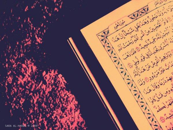 Чем милосерднее мы становимся, тем больше становится наша возможность обрести Его милосердие