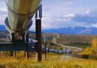 Тайный нефтепровод ИГ проложен по территории Турции