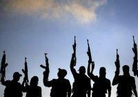ИГ и «Аль-Каида» обменялись оскорблениями
