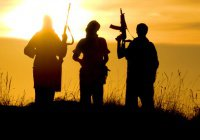 Исламское ли «Исламское государство»?