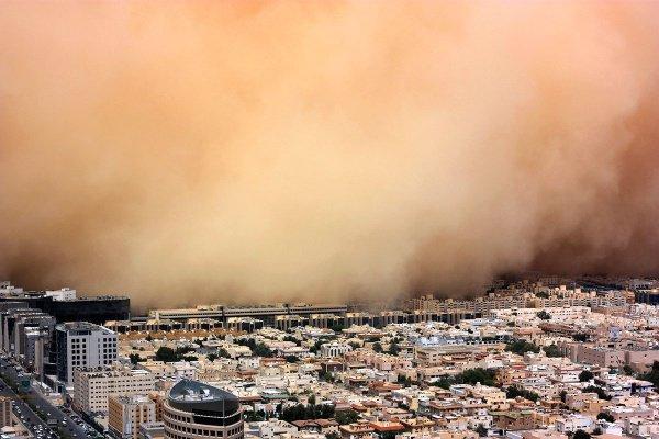 Так саудовцы хотят сделать свой вклад в стратегию по замедлению изменения климата