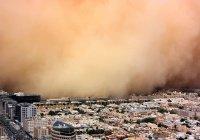 Саудовская Аравия хочет уменьшить свое влияние на климат