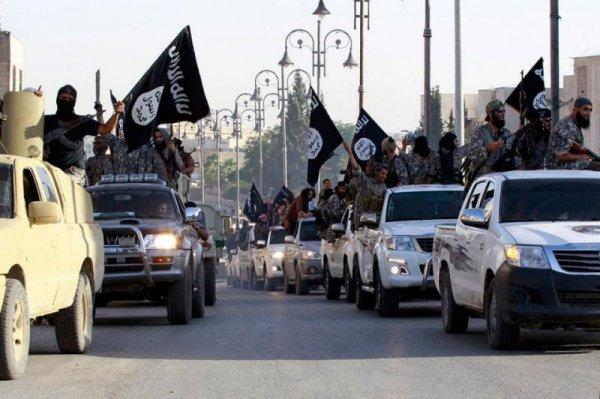 Эксперты: ИГ слабеет день ото дня