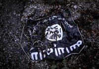 СМИ: ИГ угрожает устроить теракты в России