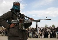 Мусульмане России призвали Запад активнее бороться с террористами