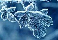 В Казани в ближайшие дни будет морозная погода
