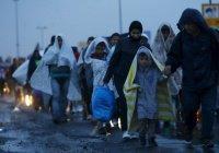 Ватикан передал €110 000 для сирийских беженцев