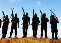 Боевики ИГ массово бегут из Ракки