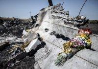 Принц Абу-Даби поможет в поиске виновных в гибели лайнера А321