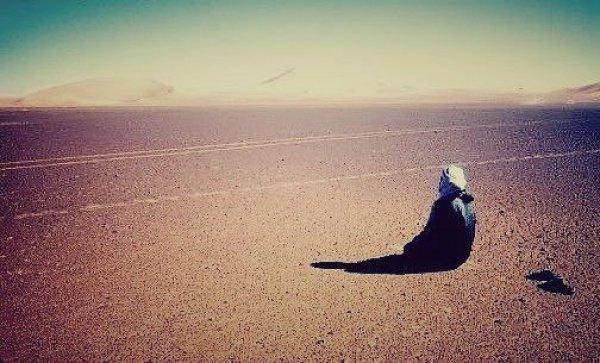 Пророк Мухаммад (да благословит его Аллах и приветствует) сказал: «Все люди совершают грехи. Кающиеся – лучшие из людей»