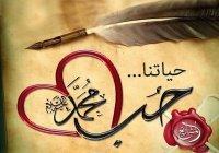"""""""В этом случае заявления о любви к Пророку (мир ему) лживы и пусты!"""""""