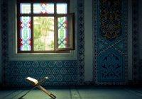 7 причин любить ислам