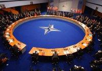 У НАТО нет слов сочувствия в связи с крушением Су-24