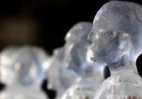 Учёные научились замораживать и размораживать органы