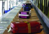 В Россию вернули последний багаж туристов из Египта