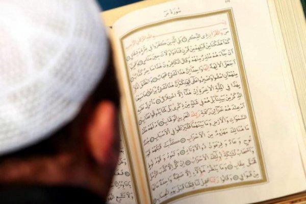 Имамы пройдут обучение до конца декабря