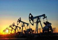 Госдеп США признал факт контрабанды нефти от ИГИЛ в Турцию