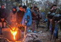 19 мигрантов попытались проникнуть в Великобританию в автоцистерне с цементом