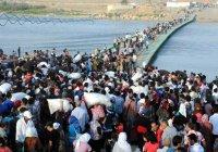 С начала 2015 года Европа приняла более 890 тыс. мигрантов и беженцев