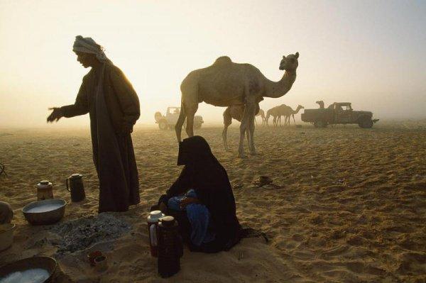 Как живут современные бедуины