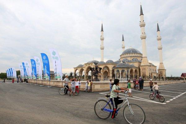 Чечня, с. Джалка. Мечеть им. Султана Делимханова