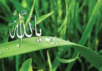 Что Всевышний Аллах создал самым первым?