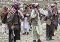 Пакистанские талибы отказались присягать ИГИЛ
