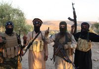 Более 150 террористических группировок действуют в Сирии
