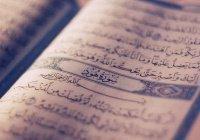 Какими профессиями владел посланник Аллаха (мир ему)?