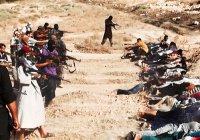 США хочет признать геноцидом убийства террористами ИГИЛ христиан