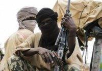 Исламисты в Нигерии расстреляли 15 человек