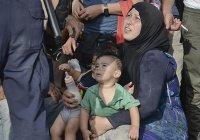 450 мирных жителей эвакуированы в Сирии в ходе локального перемирия