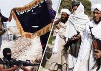 ООН: «Талибан» и ИГИЛ вступили в прямой конфликт