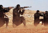 11 вербовщиков ИГИЛ арестованы в Тунисе