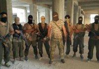 """""""Аль-Каида"""" возрождается в Афганистане"""