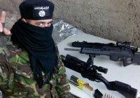 «Киберберкут»: в украинском полку «Азов» служат боевики ИГИЛ
