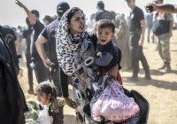 Парламент Британии просит принять 3000 сирийских детей